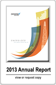 Annual Report - view or request copy