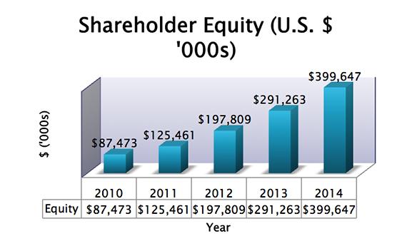 SIAF 5 Year Shareholder Equity chart